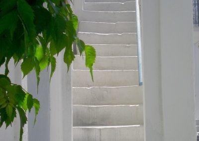 templedalliances-elevation-vibratoire-